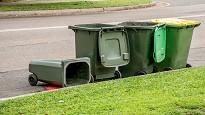 multa Comune rifiuti abbandonati