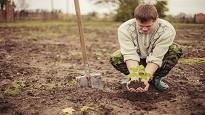 Contratto agricolo 2020 busta paga