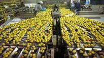 Contratto industria alimentare 2020 orari