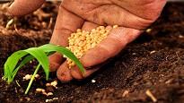 Lavorare settore agricolo regole