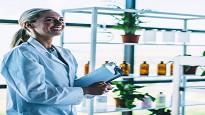 Paga base contratto chimico 2020