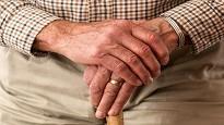 Pensione reversibilita perdita