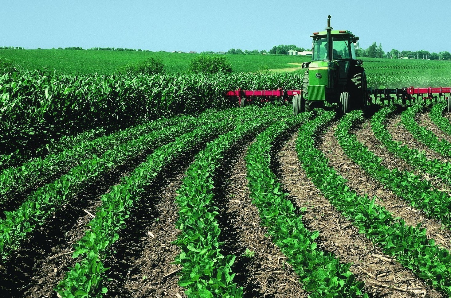Agevolazioni agricoltura 2020 quali sono, a chi spettano, requisiti per fare domanda