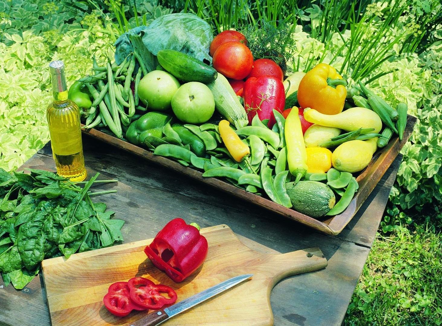 Agricoltura biologica: quanto è diffusa in Italia?