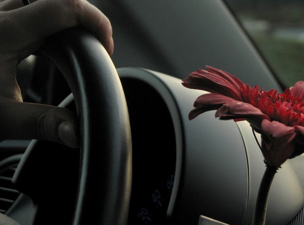 Controllo punti patente: sei a rischio di ritiro veicolo?