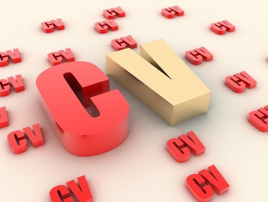 europass cv  consigli per scrivere un curriculum europass