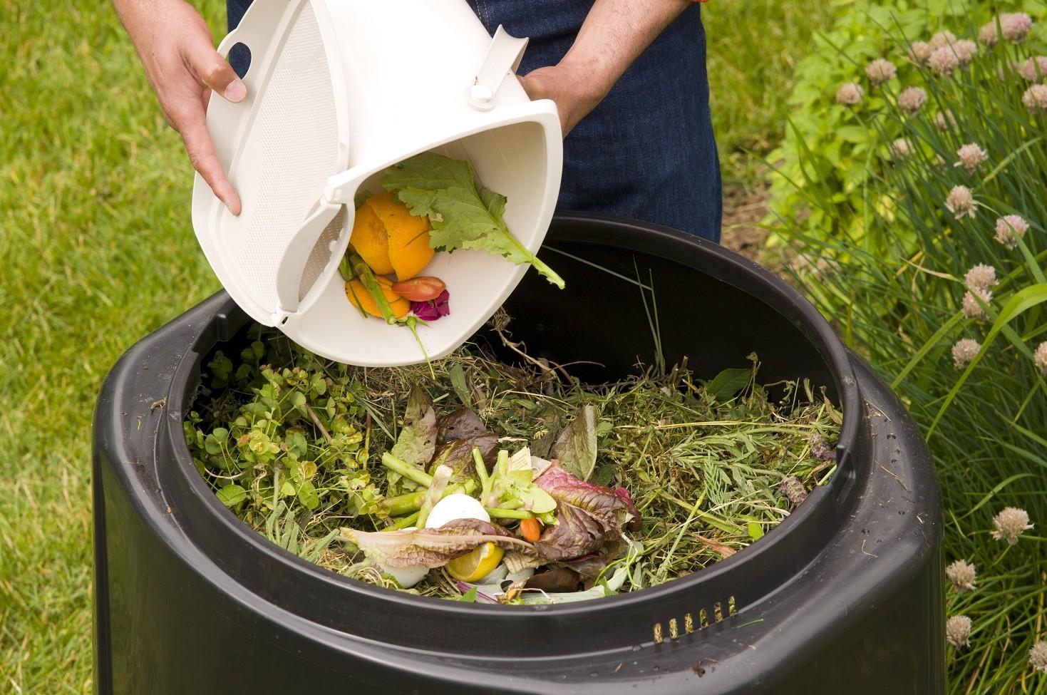 Guida al compostaggio domestico: istruzioni e consigli
