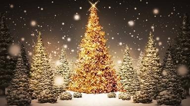 Immagini Auguri Di Natale Animati.Auguri Di Natale Capodanno Buone Feste 2015 Frasi Da