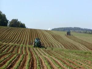 Imu terreni agricoli 2014 e non: proroga