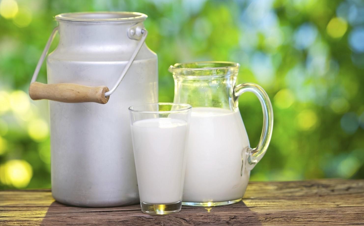 Agripiacenza Latte e Casearia Monti Tren
