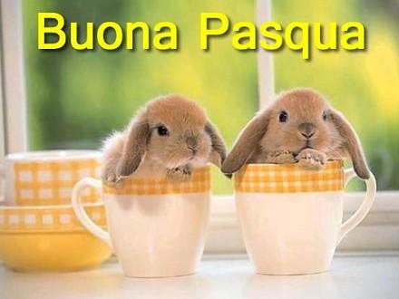 Auguri Buona Pasqua Serena E Felice Immagini Pasqua Divertenti Con