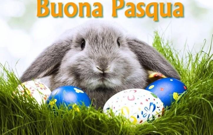 Auguri di Pasqua: 20 video originali, 20