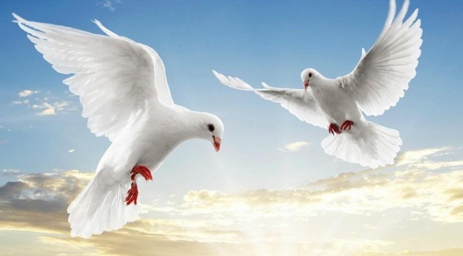 Auguri di Pasqua frasi di pace e amore,