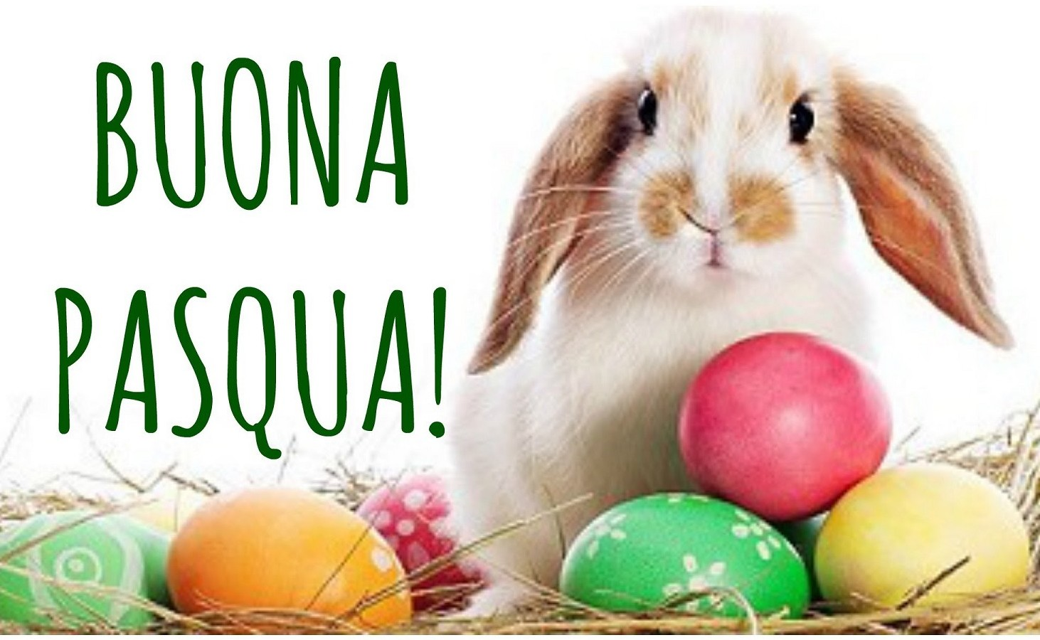 Frasi Auguri Pasqua originali
