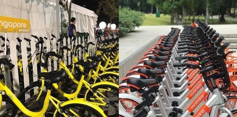 Bike sharing Torino, Firenze, Milano e u