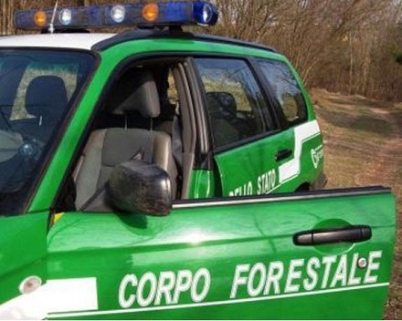 Bonus 80 euro carabinieri, polizia, vigi