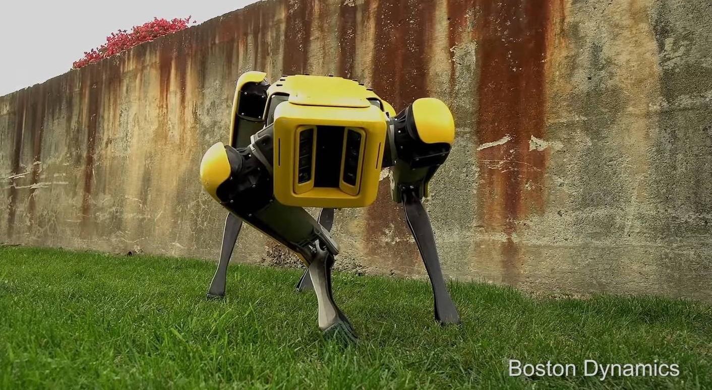 Cane-Robot aprono le porte e autonomamen