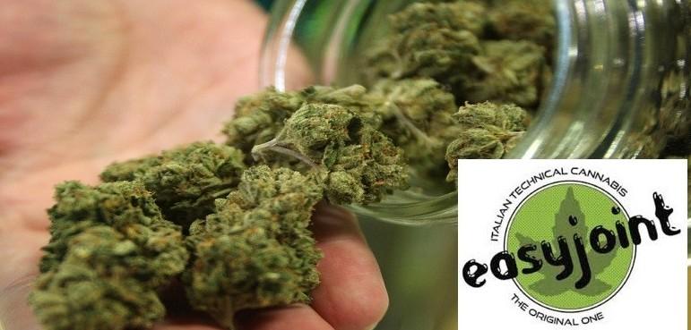 Cannabis light, si pu� comprare nelle ci