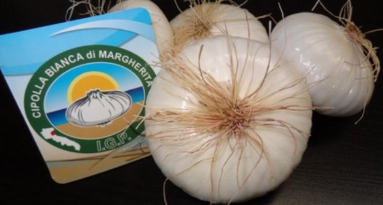 Cipolla Bianca di Margherita Igp si pres
