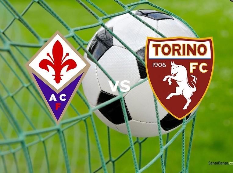 Fiorentina Torino streaming per vedere (