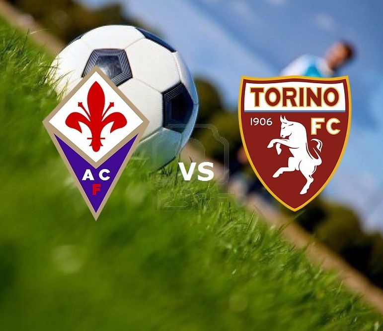 Fiorentina Torino streaming su siti web.