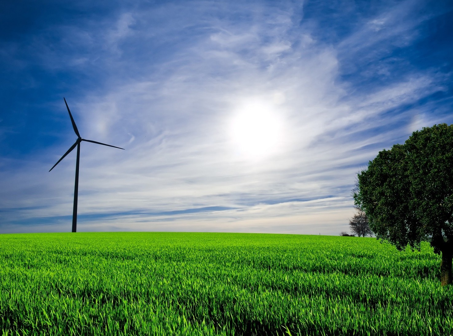 Green Economy export, occupazione in for