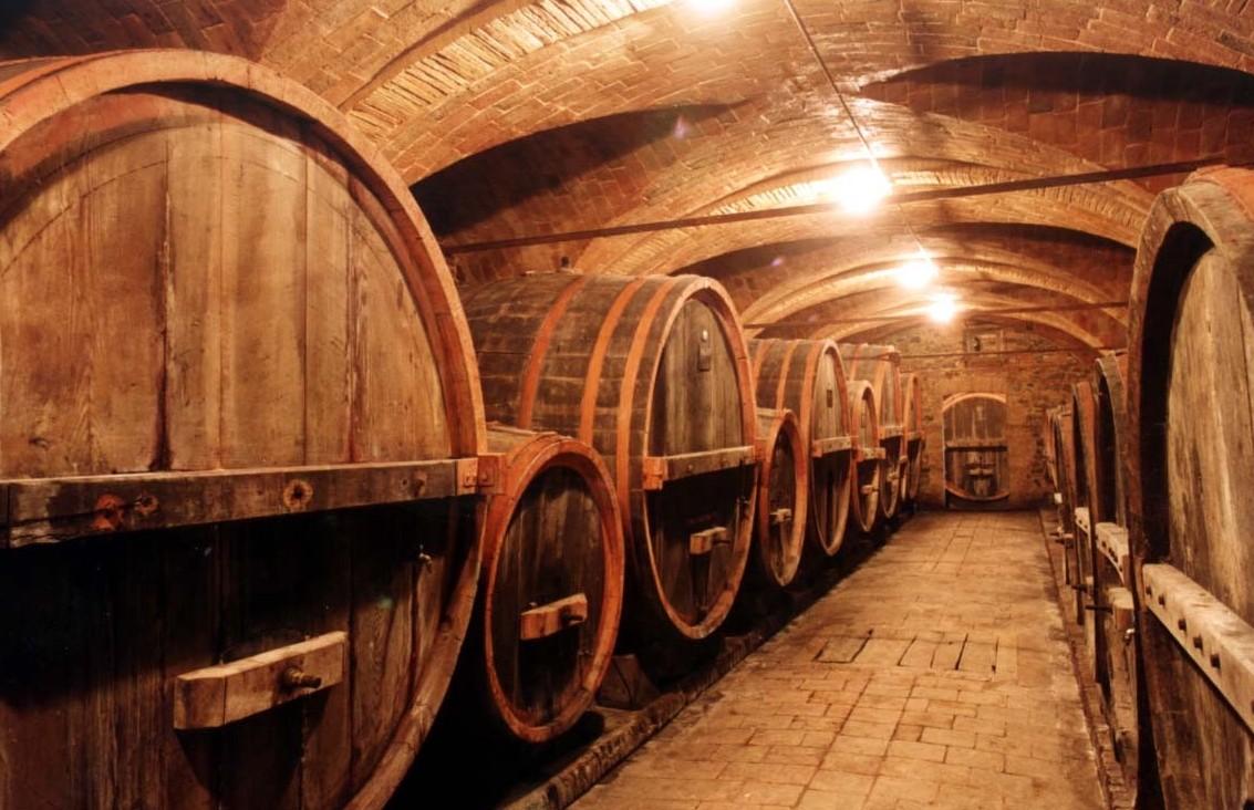 I migliori vini italiani 2018-2019 rappo