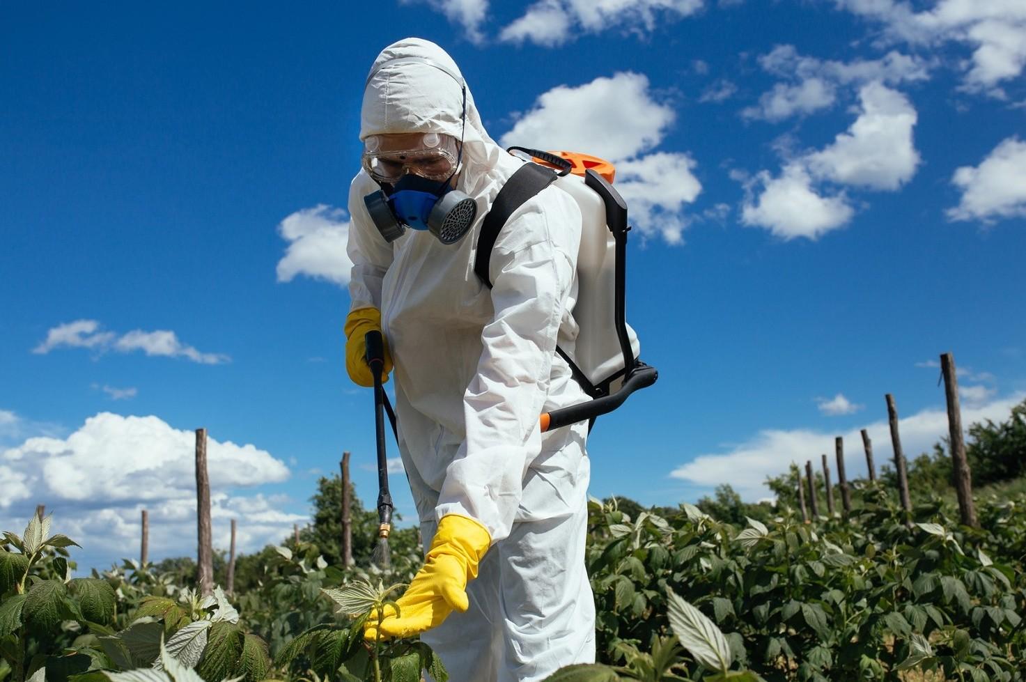 Pesticidi, sempre in maggiori quantit� n