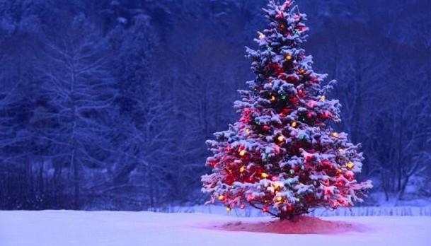 Natale, regali online acquistati in Ital