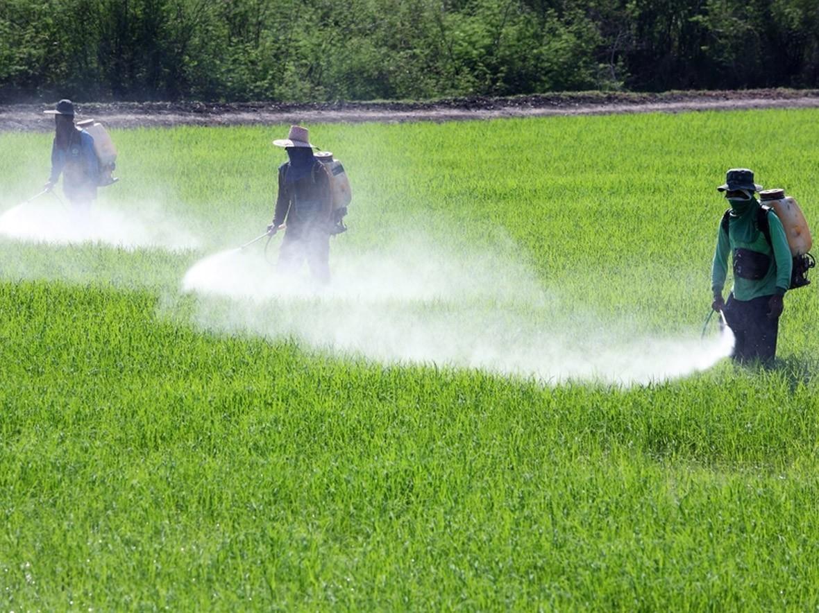 Pesticidi, aumento molto forte nell'
