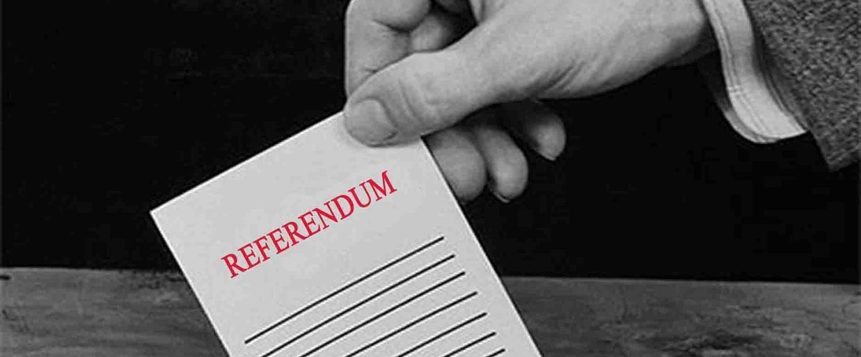 Referendum sondaggi convergenze e diverg
