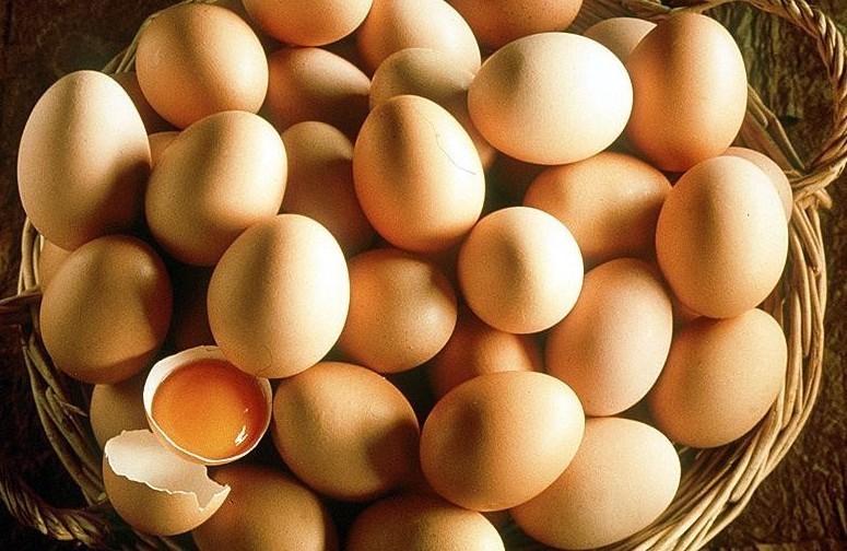Uova contaminate: novit� situazione Ital
