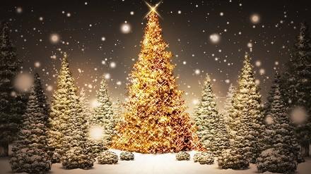 Auguri Di Natale Animati Da Inviare Via Mail.Immagini Natalizie Animate Da Inviare Per Email Disegni Di
