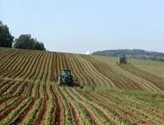 Imu terreni agricoli 2014 e non: proroga ufficiale 2015. Solo annunci al momento. Quando e cosa cambia, discussioni