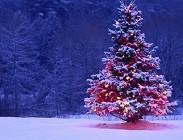 Immagini Auguri di Natale più belle, simpatiche, originali, divertenti e disegni, video, foto, sms per Facebook, Whatsapp