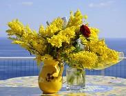 Auguri Festa della Donna mamma, moglie, fidanzata, compagna, amica, collega