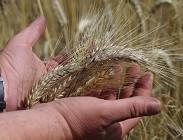Bonus 600 euro braccianti agricoli