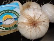 Cipolla si presenta a livello nazionale