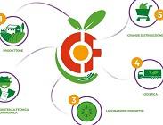filiera alimenti, cibo, multnazionali