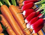 dieta radici benefici
