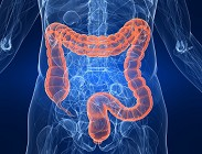 Dieta intestino dimagrire