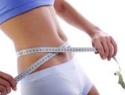 diete diverse sistemi obiettivi
