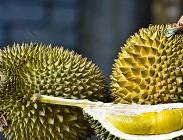 Durian frutto proprietà benefici