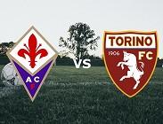 Fiorentina Torino streaming gratis live. Vedere su migliori siti web, link