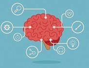 Allenare il cervello con il web