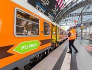 Flixbus successo in Italia