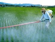 glisofato, pesticida, europa, usa