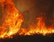 Incendi a Roma oggi 7 Agosto: aggiornamenti in tempo reale. Strade chiuse A24, Pontina, Montesacro, Ponte delle Valli