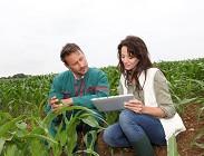 Italia, lavoro, agricoltura