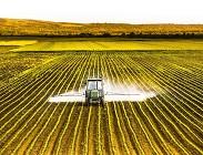 Pesticidi, oltre l80%